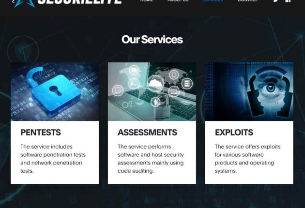 Fake cyber security company SecuriElite's homepage (Image: Google)