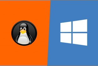 Old crypto malware makes come back, hits Windows, Linux devices